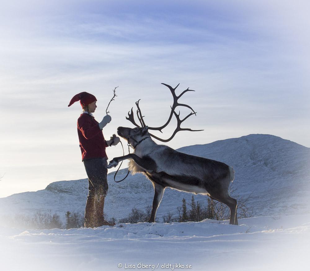 Ullis & Rudolf, från Renranchen.