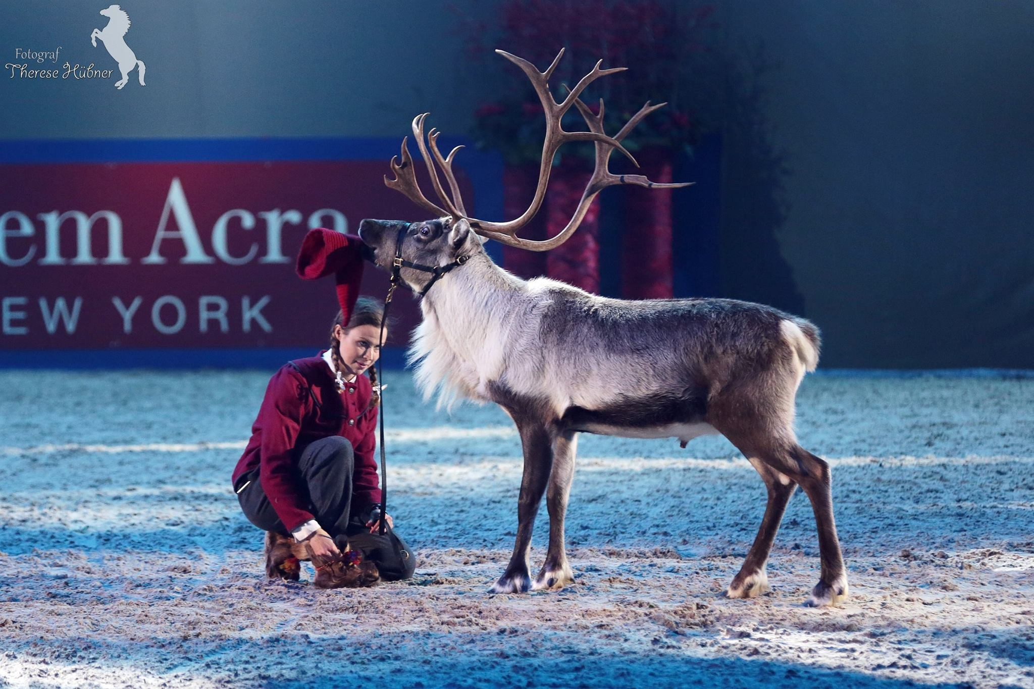 Friends Arena 2014, Show med Ullis & Rudolf från Renranchen i Kluk.