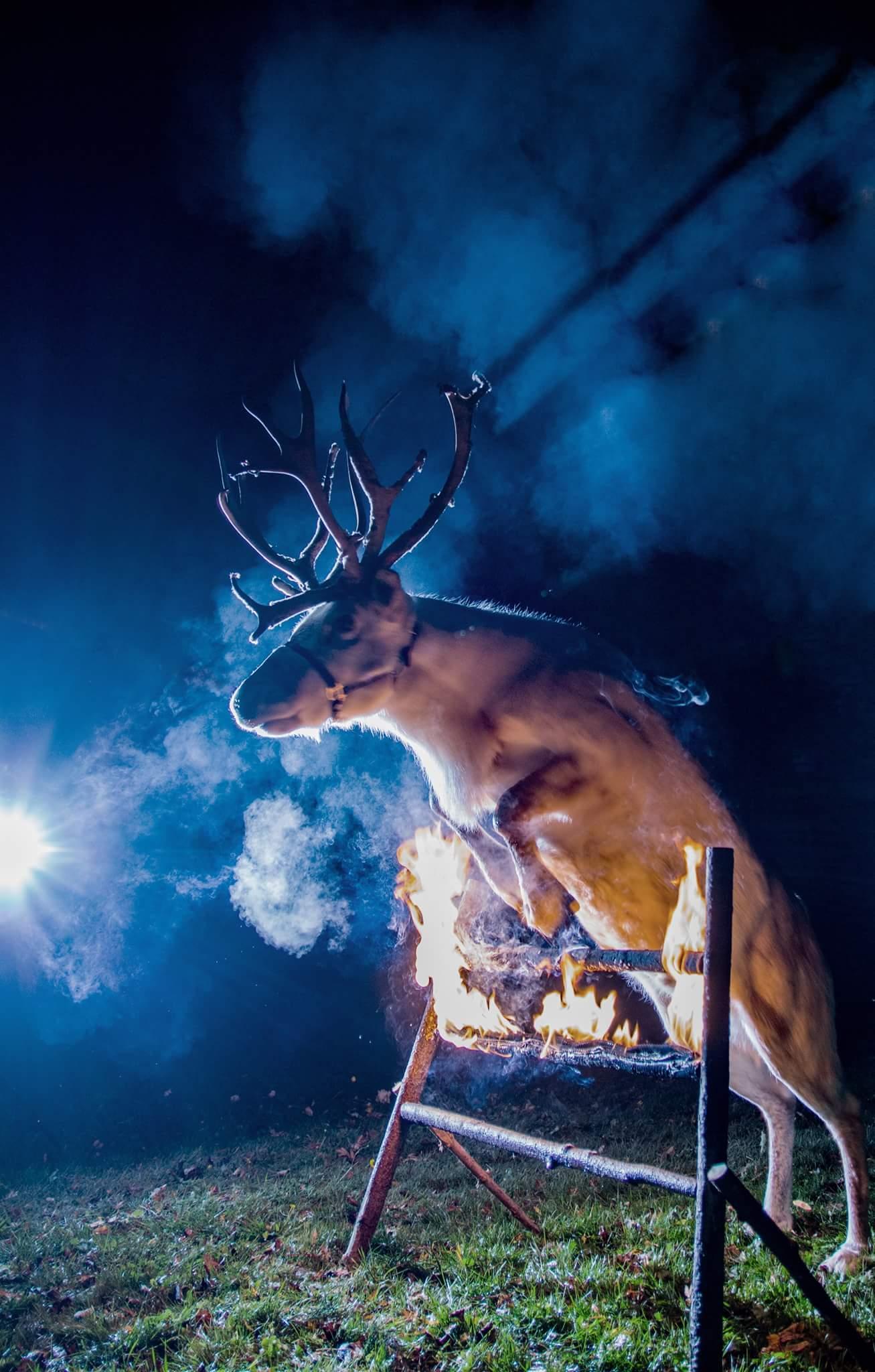 Frost från Renranchen övar inför framtida event.