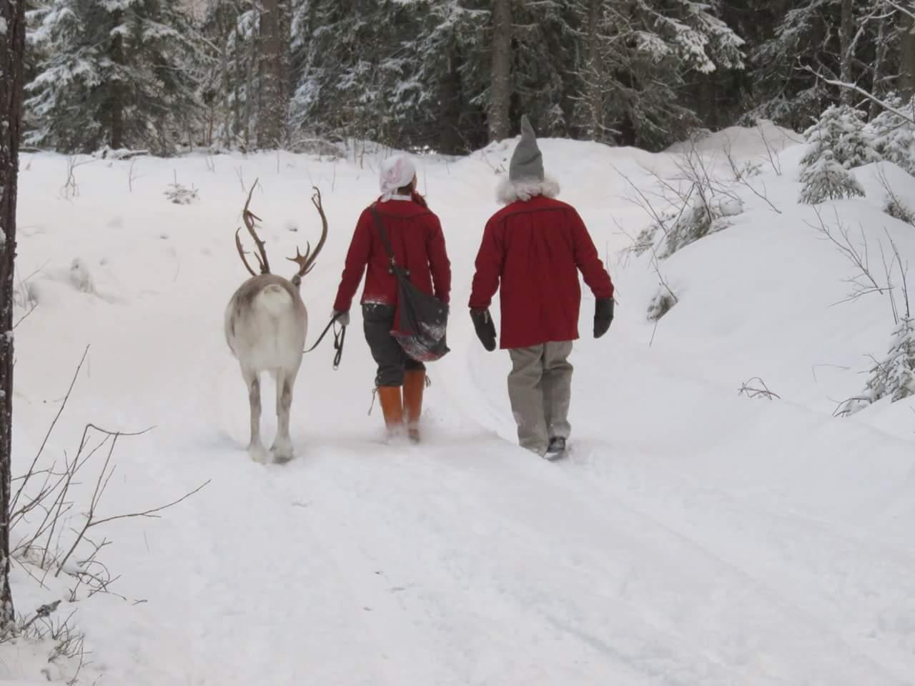 Frost och tomtarna, från Renranchen i Kluk.