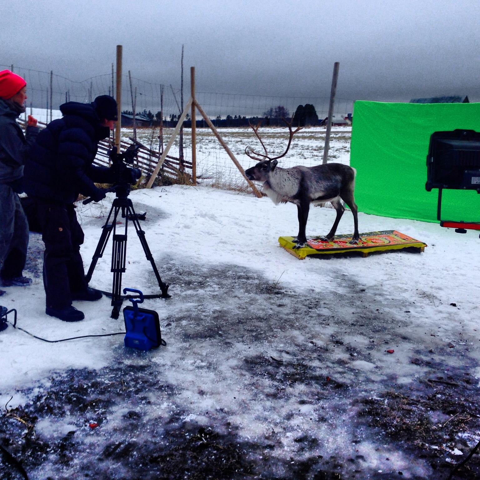Scenen när Rudolf tittar in genom fönstret på Copperhill filmades med greenscreenteknik.