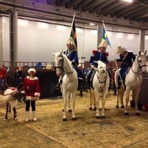 Beridna högvaktens hästar var modiga, om än lite brydd på Rudolf.