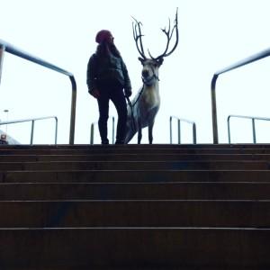 Jag och Frost längst upp i trappen på Friends Arena.