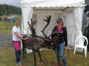 Rudolf passade på att testa laserbehandling på Västgård game fair.