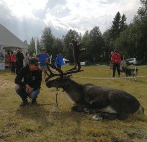 Ullis & Rudolf tar en liten vila på Västgård game fair.