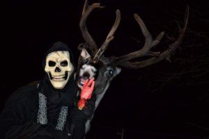 renar-reindeer-halloween-ullis-rudolf-renranchen